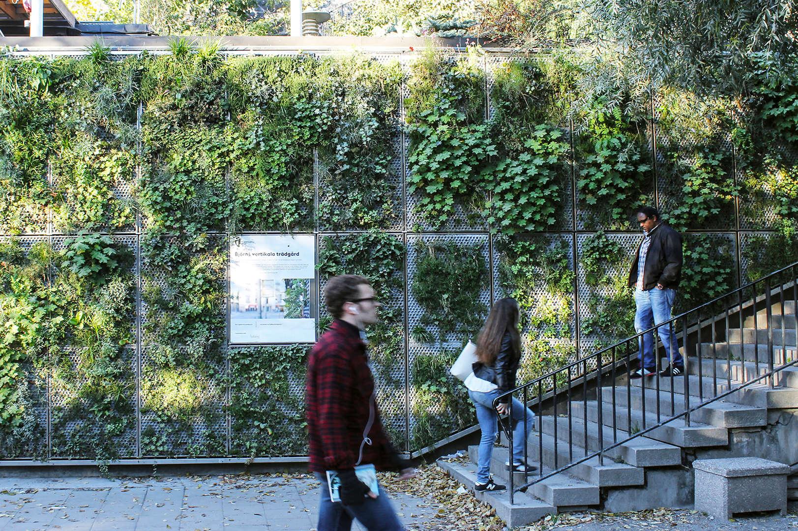 Björns Vertical Garden