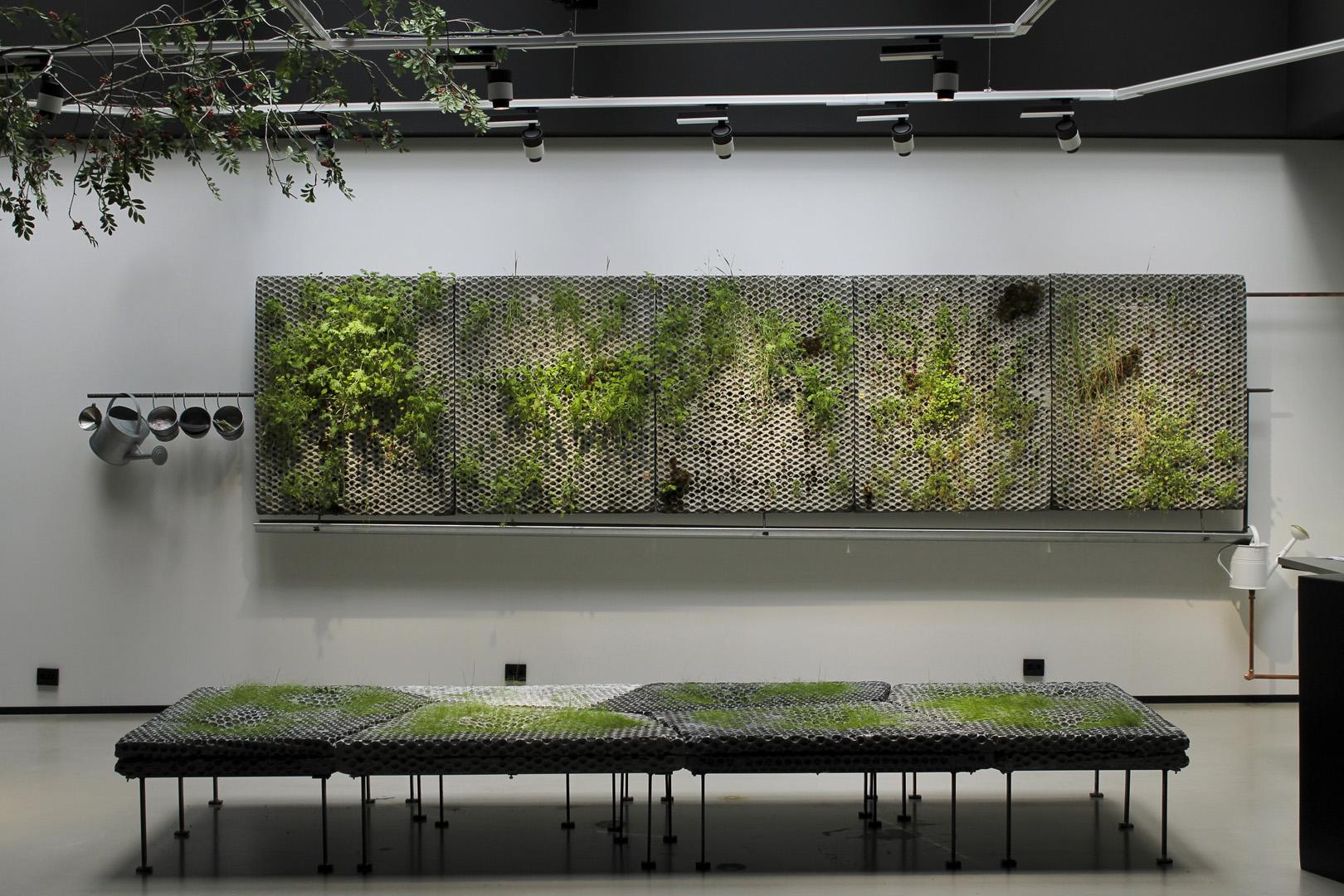 Växtväggar på betongpaneler