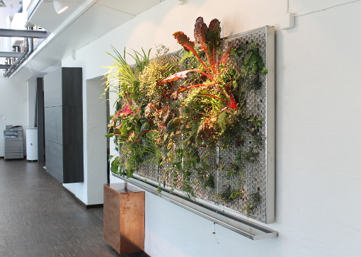 Vertical Gardens from Butong