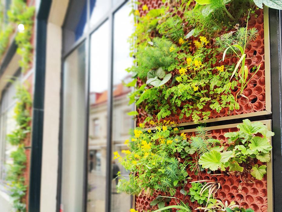 Gröna fasader Vantör